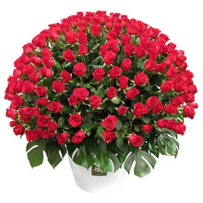 Корзина из 201 розы