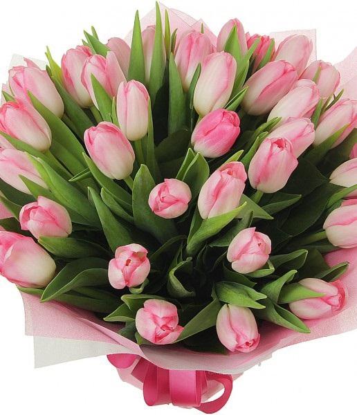 Букет розовых тюльпанов \
