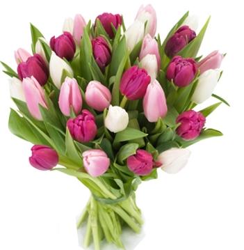 Букет тюльпанов \