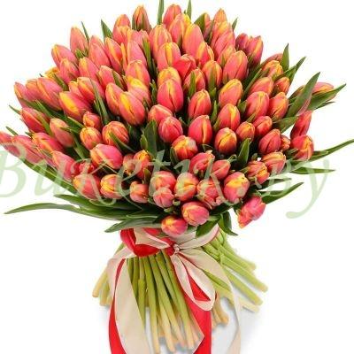 Букет из 101 голланского тюльпана