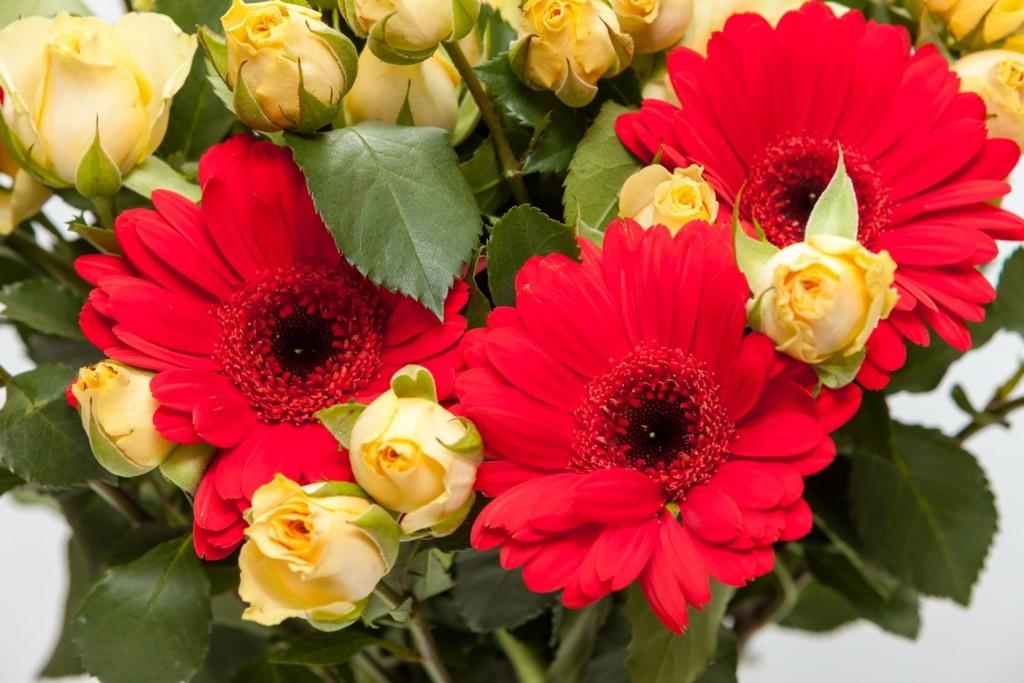 Букет из кустовой розы и гербер