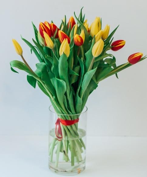 Букет из красно-желтый микс тюльпанов ( 15,25 или 50 шт)
