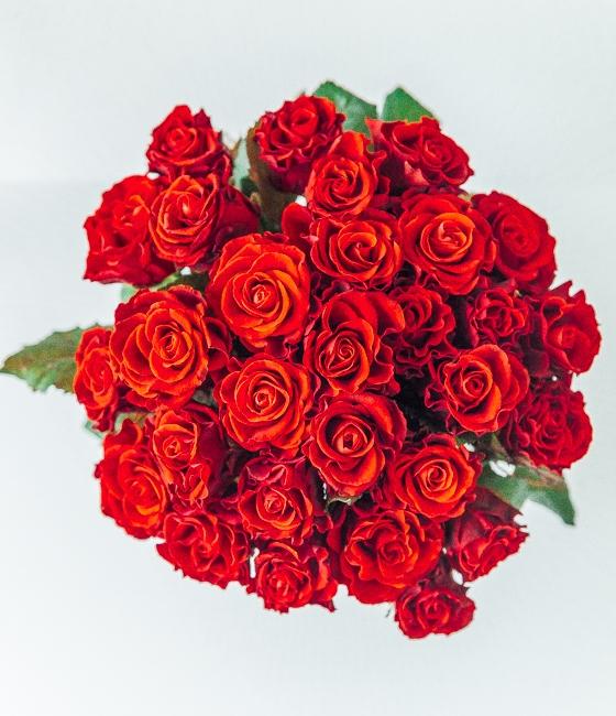 Букет роз сорта Эльторо