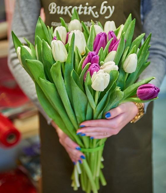 Букет из 35 белых и сиреневых тюльпанов