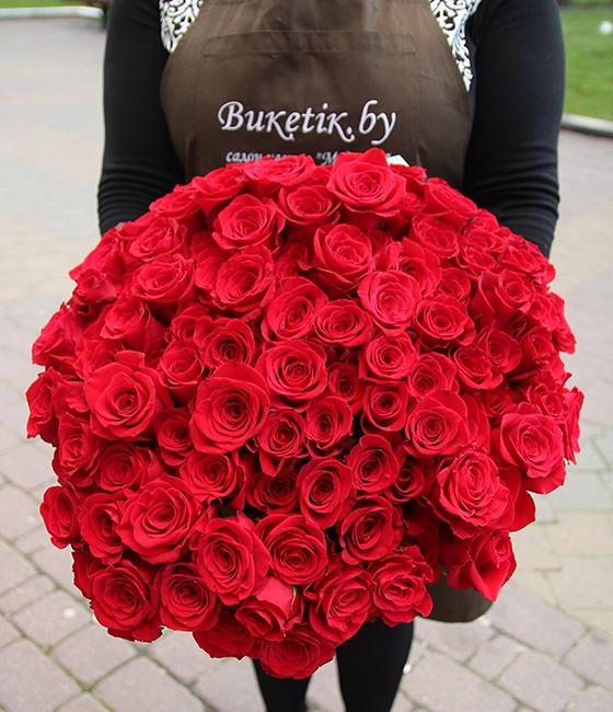 101 роза Фридом
