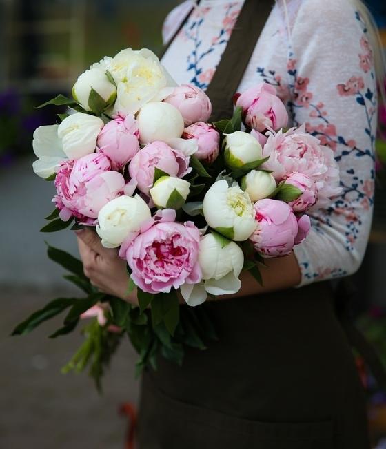 Букет из 21 розово белого пиона