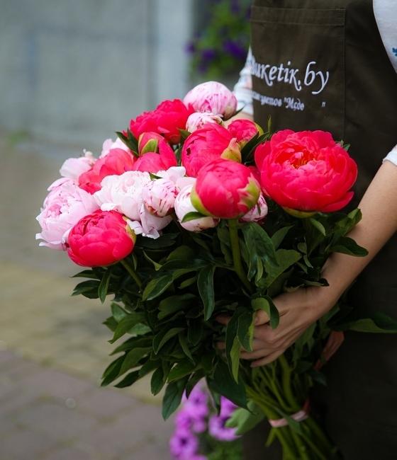 19 Красно розовых пионов